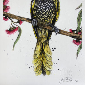 birdlife australia, Limited Edition, art, Bird Art, Birds, Australian birds, bird artwork, animal art, animal artwork, nursery decor, wall art, home decor, home interiors, Australian interiors, Australian art, Australian, animal art, textured art, Australiana, watercolour painting, watercolor, unique wall art, regent honeyeater, honeyeater, handmade, shannon dwyer artist